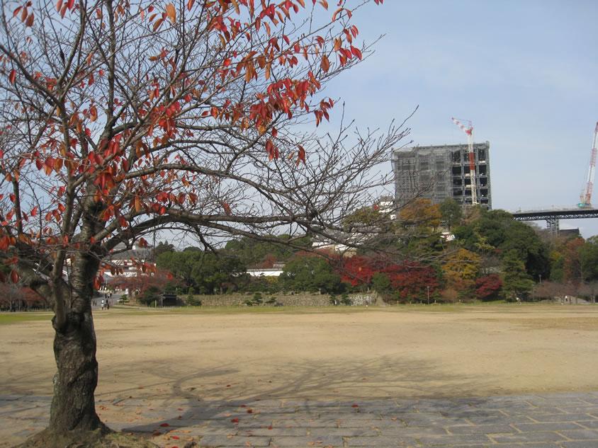 姫路城の画像 p1_27