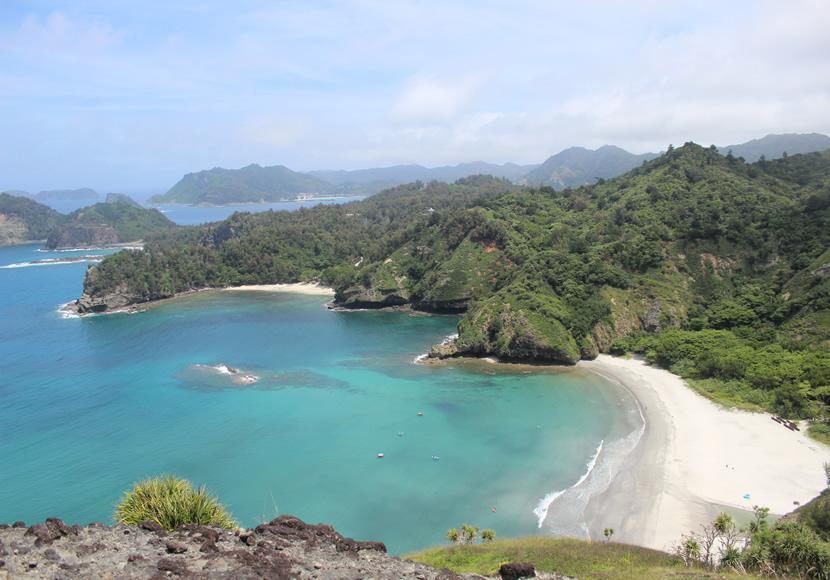 小笠原諸島の画像 p1_11