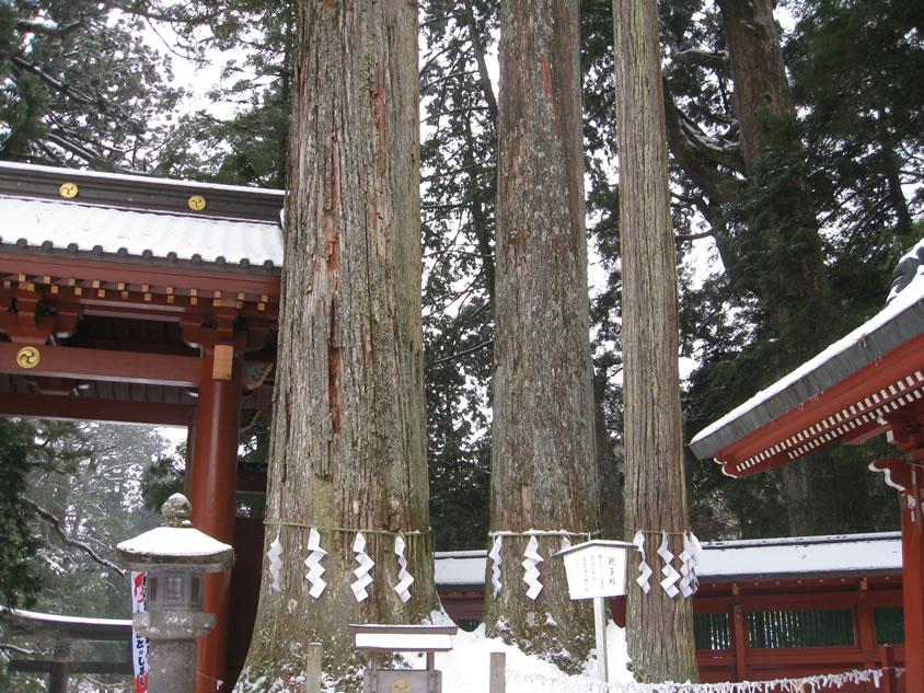 日光の社寺の画像 p1_8